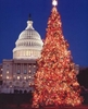 Christmas in Washington